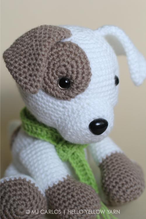 Jack-Pup-HYY-5